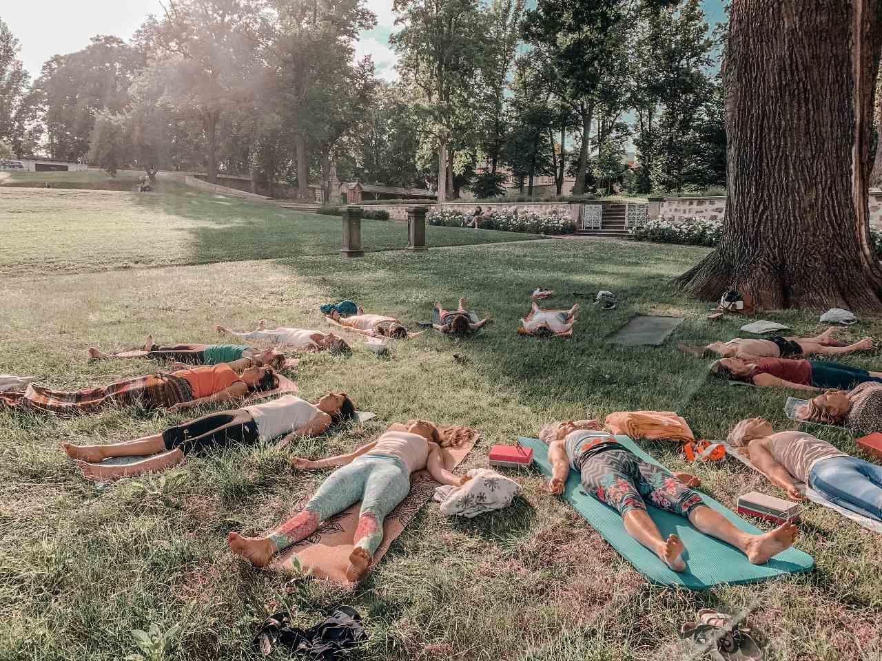 jogíni v shavasaně pod stromem na jóga víkend