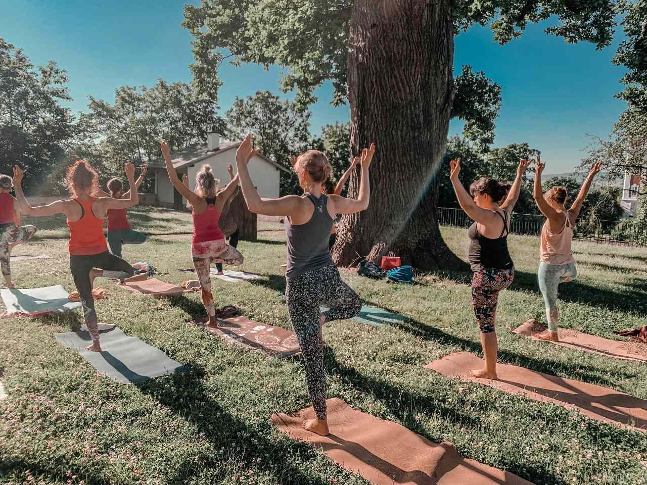 balanční pozice skupiny jogínů, zády k objektivu, pozice stromu s rukama rozpaženými doširoka pod stromem na jóga víkend